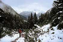 Abstieg in das Höhenbachtal