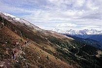Höhenweg zu Larcheralm