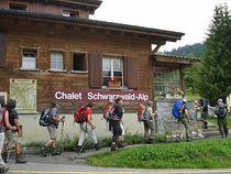 Schwarzwald-Alp