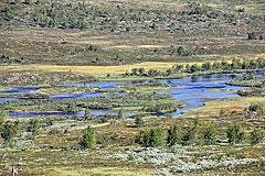 Kaitumjåkka