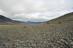 Steinwüste nördlich des Tjäktjapass