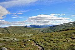Blick zum Hardangerjøkulen vom Storoksla