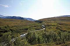 Im Tal des Vierrojohka