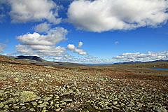 Zwischen Bessheimrundhøe und Besstrondfjellet