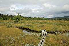 Brücke im Sumpfgebiet Dáhtájiegge