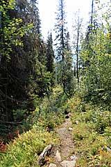Abstieg nach Kvikkjokk